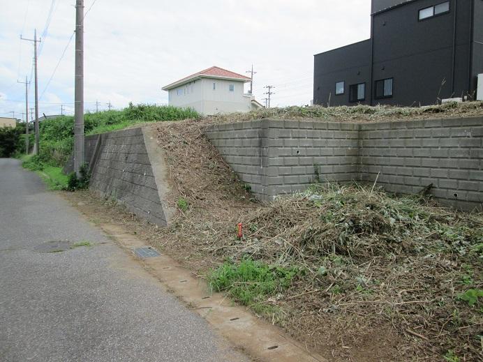 パレスガーデン成田土地